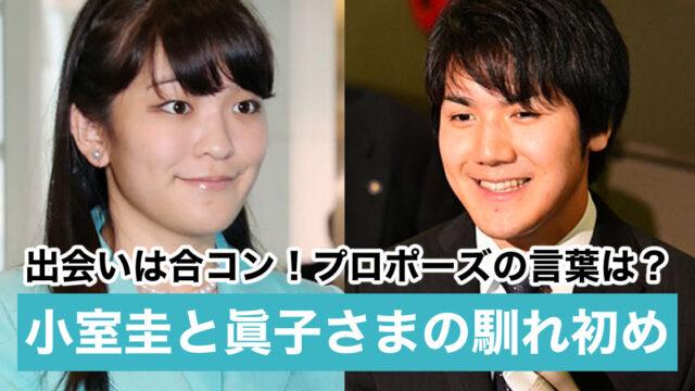 【時系列】小室圭と眞子様の馴れ初めとプロポーズ|出会いは合コン?