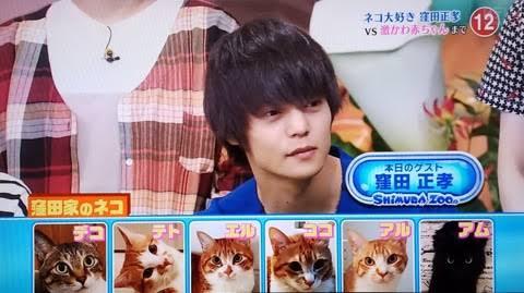 窪田正孝 母親 猫好き